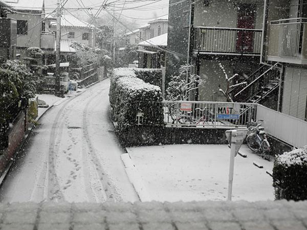20120229雪②