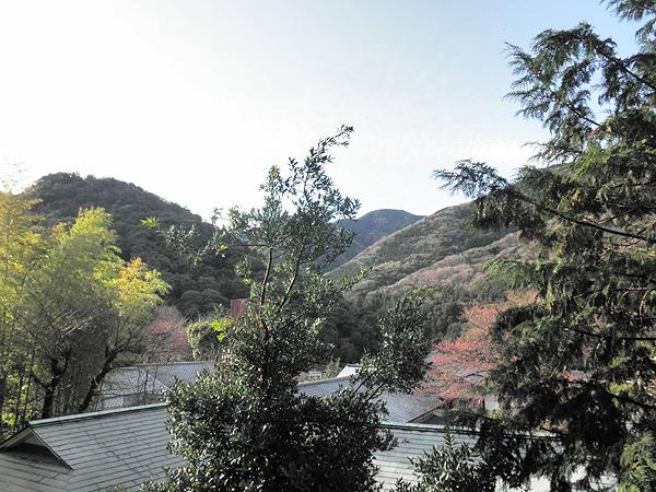 20120331景色