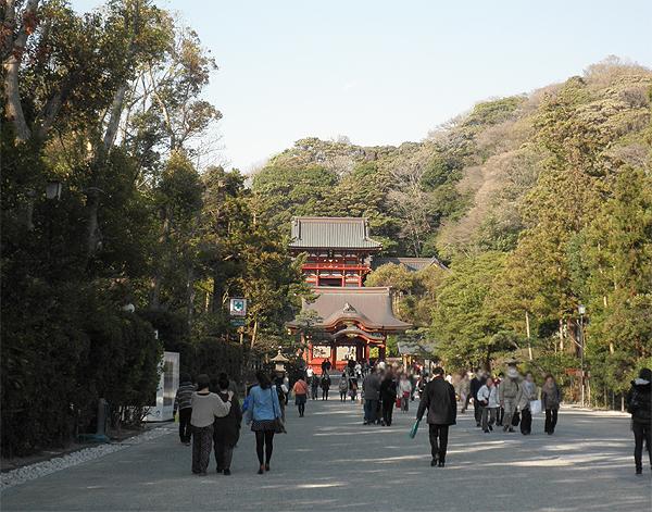 20120405鶴岡八幡宮①