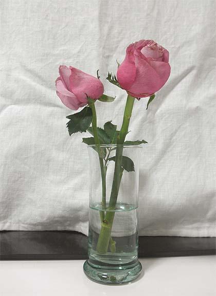 20121123部屋花