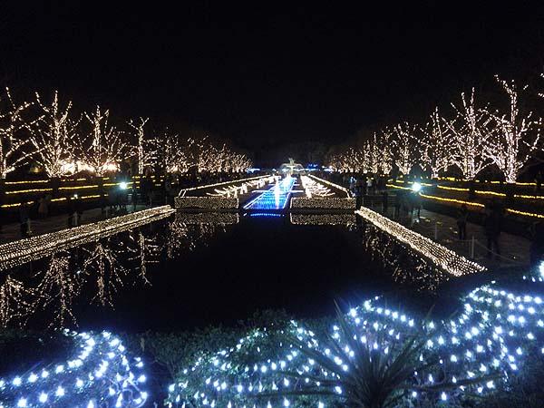 20121223昭和記念公園①