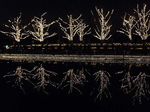 20121223昭和記念公園③