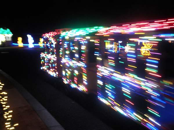 20121223昭和記念公園⑤