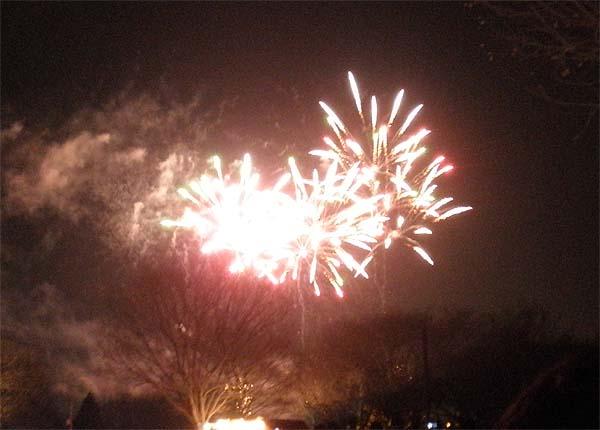 20121223昭和記念公園⑦