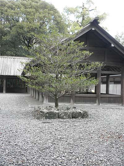 20130125三ツ石①