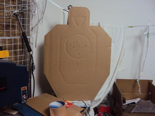 target001.jpg