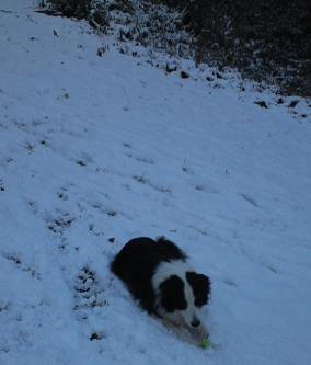 雪遊び1B