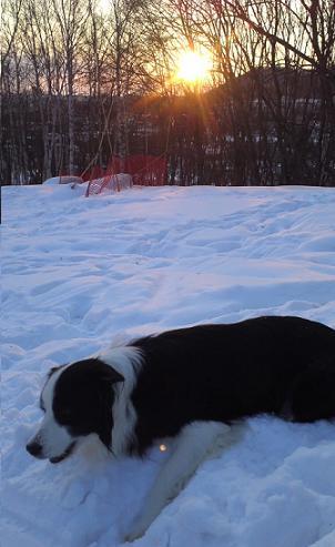 雪遊び楽しいよ~B