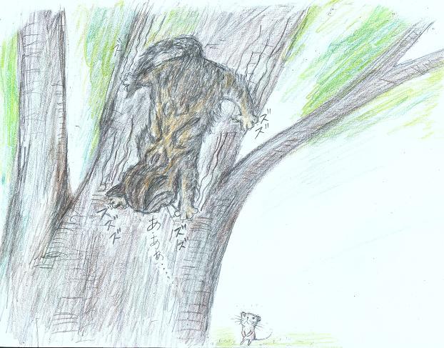 木に登るー4blog