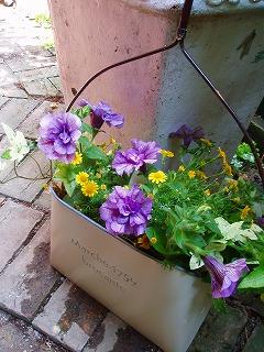 雑貨とお花のコラボ