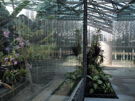新宿大温室4