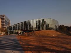 新宿大温室5