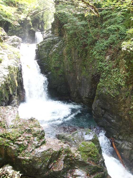 nakagawahara-010.jpg