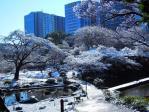 雪の後楽園4