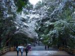 雪の明治神宮1