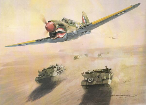 P4020Warhawk.jpg