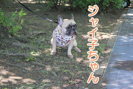 24_05_20_道満BBQ_ジャイ子
