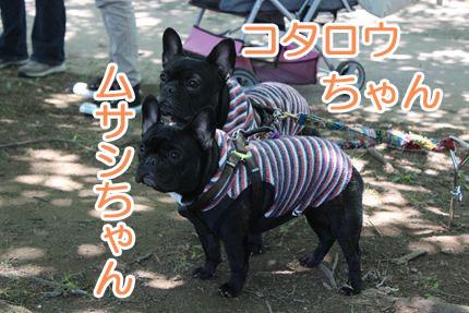 24_05_20_道満BBQ_ムサコタ