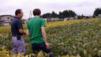 kariwano_1.jpg