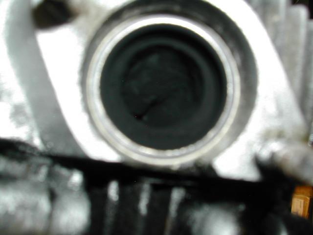 DSCN9977.jpg