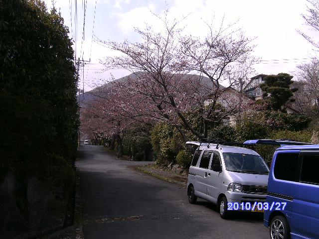 PICT8039.jpg