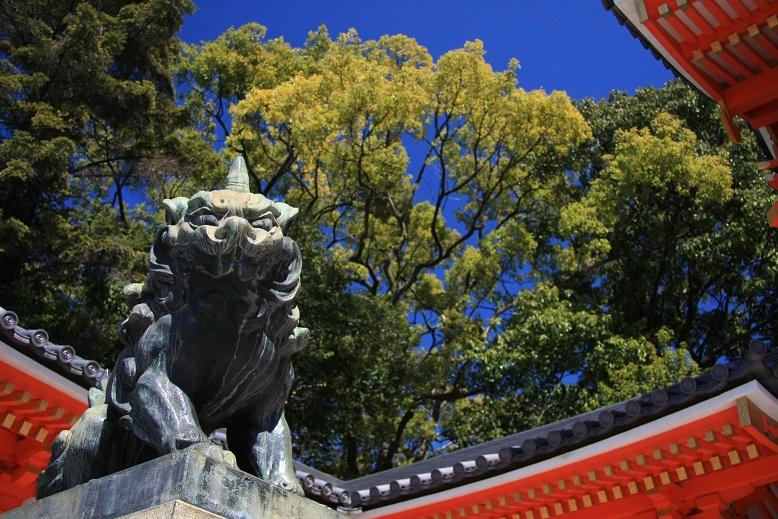 八坂神社、2