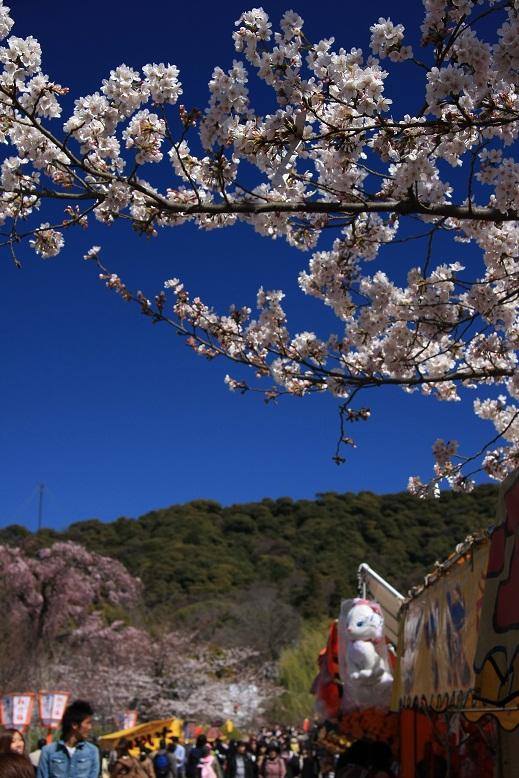 円山公園、1