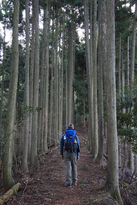 霊仙山登山、2