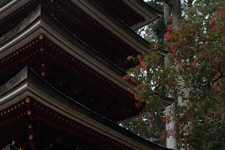 室生寺、6