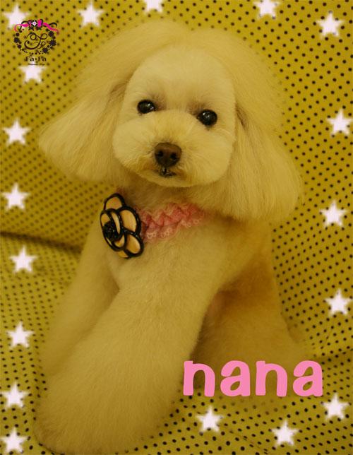 ナナちゃん2