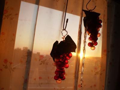 葡萄と夕日