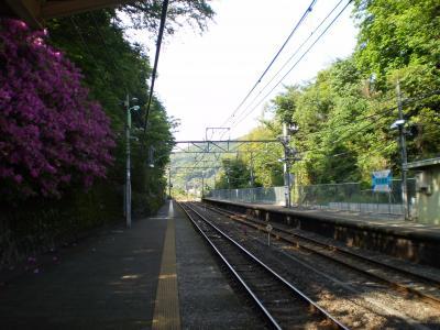 つつじの咲く駅