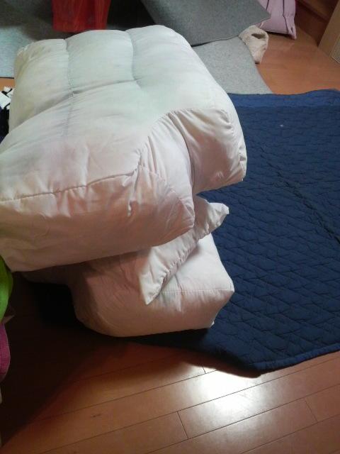 HOUSE&ROOM-2009122518090000.jpg