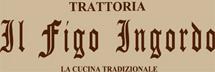 il_logo.jpg