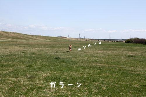 0428o-2.jpg