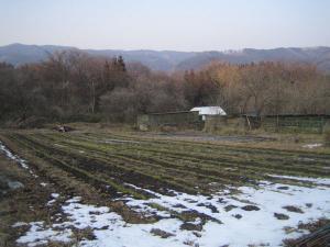 雪解けの畑