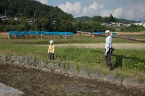 101007_稲刈り準備1