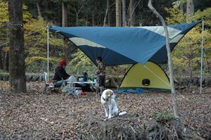 20101112_キャンプ