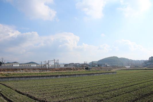 140105吉野渡瀬 (32)のコピー