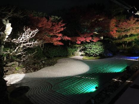 高台寺ライトアップ1