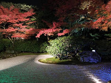 高台寺ライトアップ2