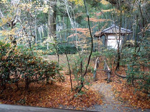滝口寺 庭1