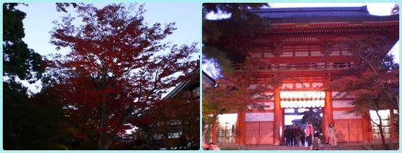八坂神社&高台寺