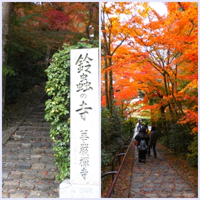 鈴虫寺階段の紅葉