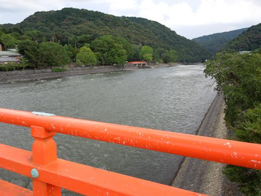 朝霧橋から観流橋を望む