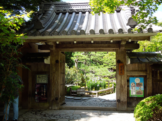 宝泉院 門