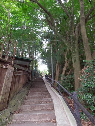 地蔵院への階段