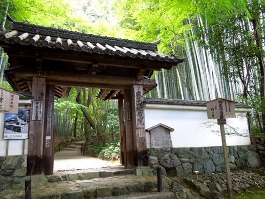 竹の寺・地蔵院