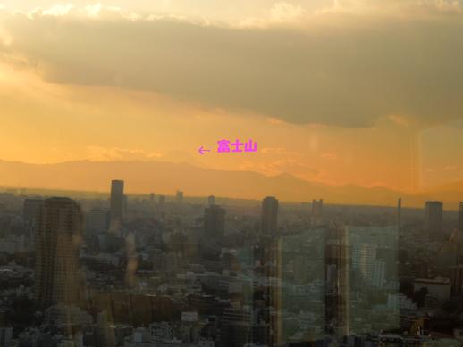 東京タワーからの富士山