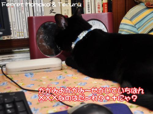 0227_3.jpg